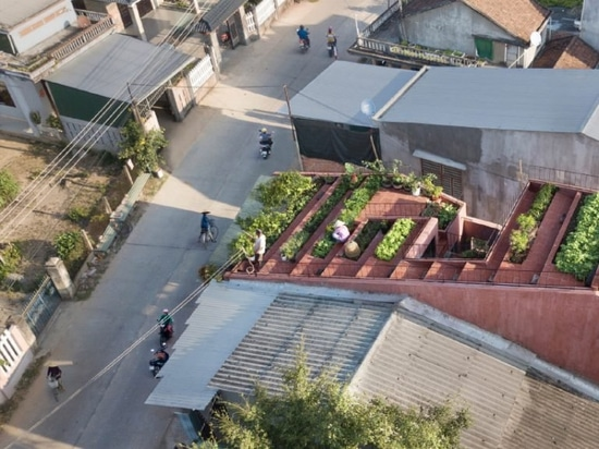 a stepped garden provides produce for the residents of the red roof house in vietnam