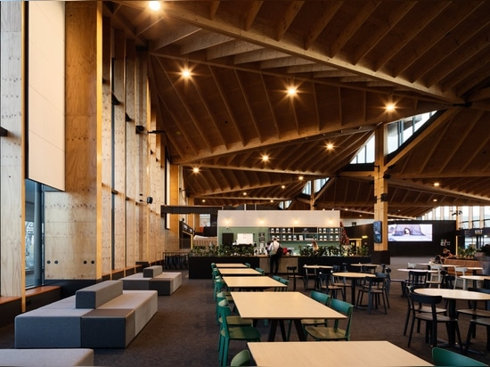 Nelson Airport, Sublime Cofee Project feat. TOOU Chairs