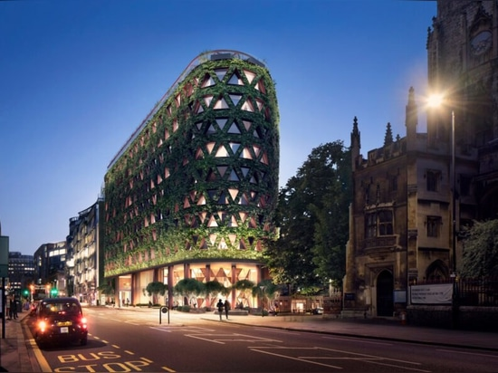 The largest green wall in Europe will absorb 8 tons of air pollution per year