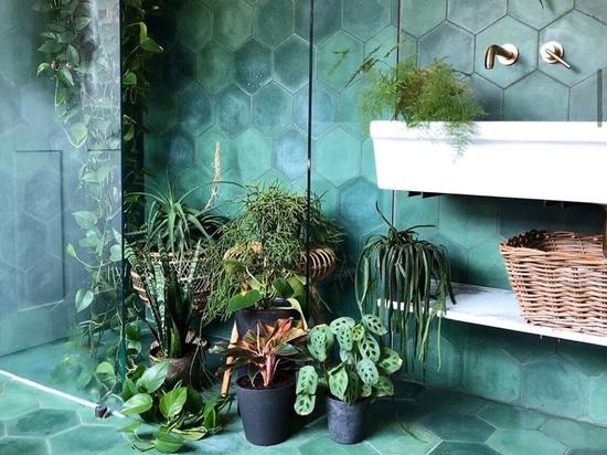 Green Corner Decor