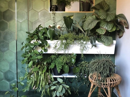 Green Corner Decor For Home