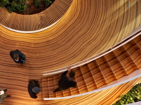 This Custom-Designed Wood Floor Was Made To Look Like The Growth-Rings Of A Tree