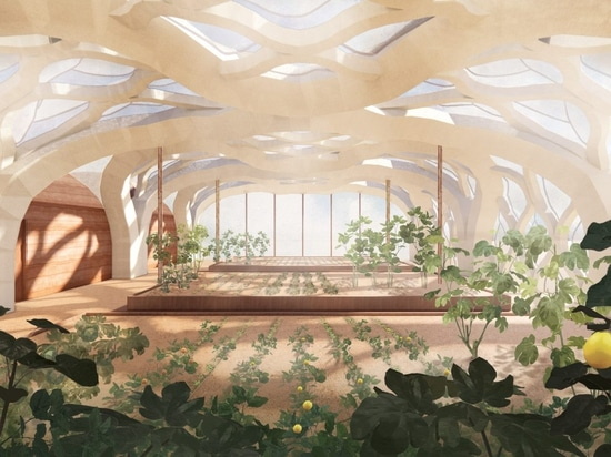 Eliza Hague designs inflatable origami-like greenhouses from bamboo and shellac