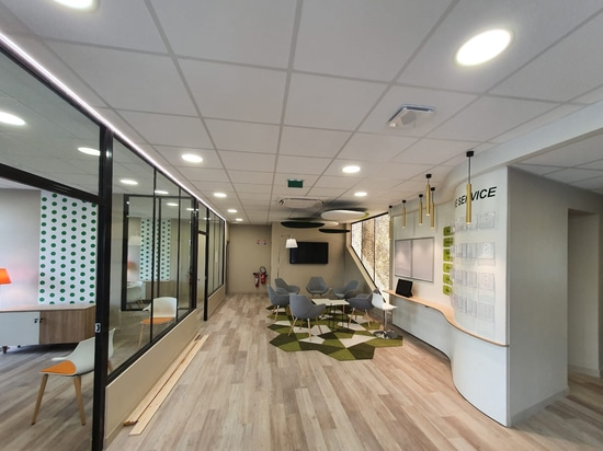 Luminous partition in an office space