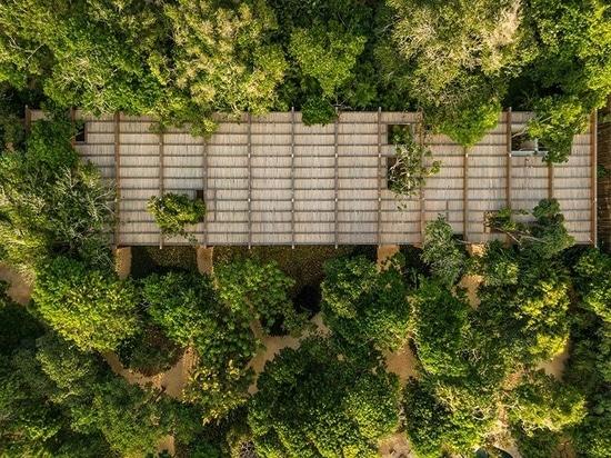 Studio MK27 hides 'sand house' within the tropical coastline of northeastern Brazil
