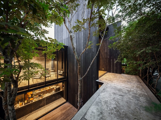 IDIN Architects' Office is obscured by tall trees