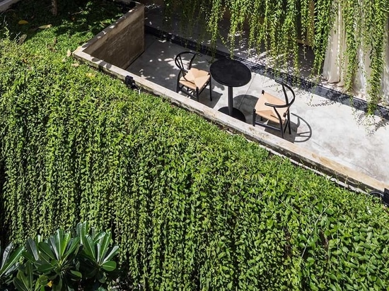Extensive Hanging Plants Soften The Use Of Concrete In This Homes Design