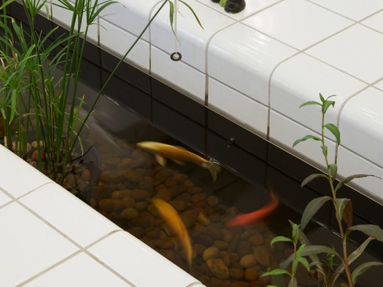 A koi carp pond sits in the centre of the tiled bench
