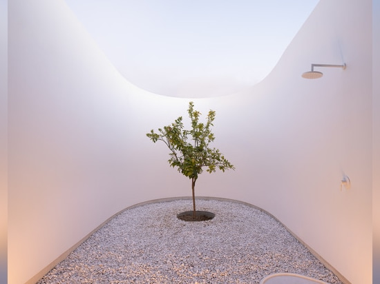 LASSA nestles its sunken KHI house and art space among the olive trees of greece