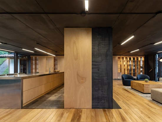 A multifunctional plywood unit divides the space
