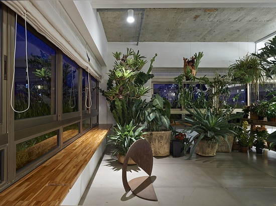 the glass-walled indoor garden allows space continuity and gives a sense of the outdoors