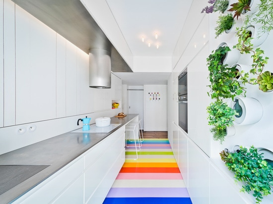 in the kitchen, a mini vertical garden provides fresh aromatic herbs