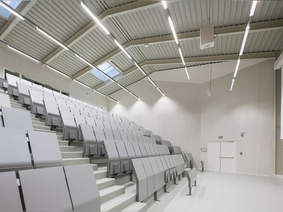 standardized metal components have been used to ensure that the roof can span large distances