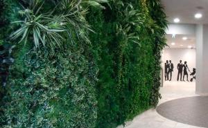 屋内と屋外の緑化