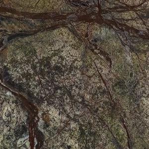 天然石製板石 / 光沢 / 床用 / 屋内用
