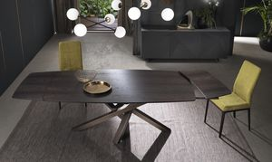 コンテンポラリーテーブル / 木製 / アルミニウム製 / 長方形
