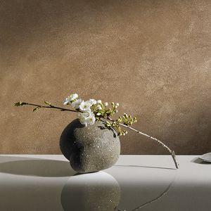 装飾塗料 / 屋内用 / 壁用 / 石灰 ベース