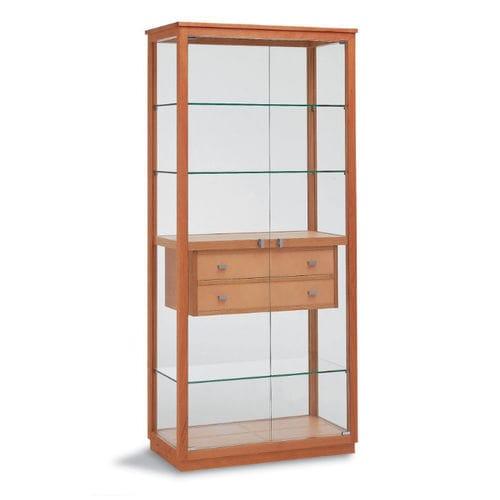 コンテンポラリー展示ケース / ガラス製 / 木製
