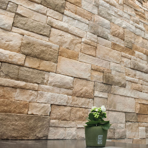 コンクリート製ウォールクラッディング / 屋内 / 外側 / テクスチュア