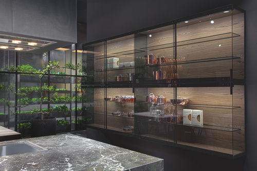 コンテンポラリーキッチン用戸棚 / 木製 / ガラス製