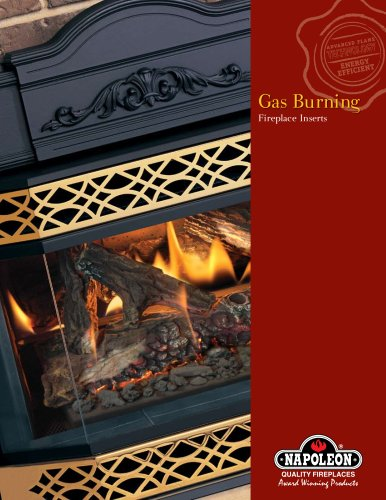 Gas Burning Fireplace Inserts