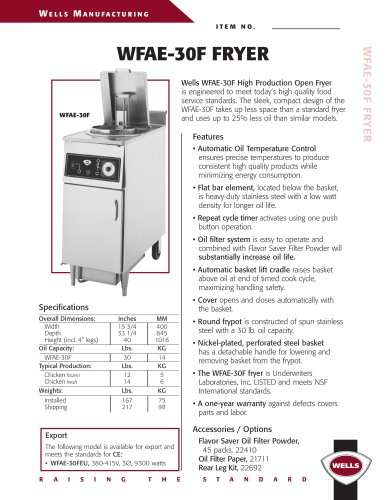 High Production Open Fryer