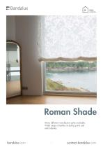 Roman Shade - 1