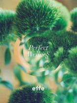 Effegibi Catalogue 2019