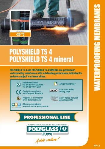 POLYSHIELD TS 4 / POLYSHIELD TS 4 mineral