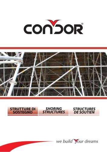 Shoring Structure