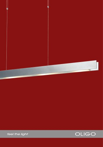 Single luminaire 2010