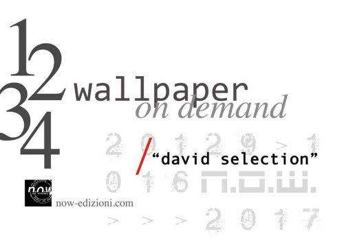 David Selection vol.1-2-3-4