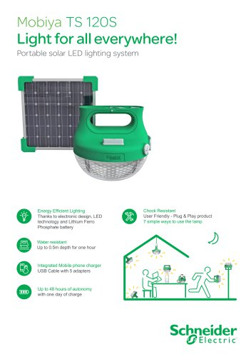 Portable solar LED lighting system
