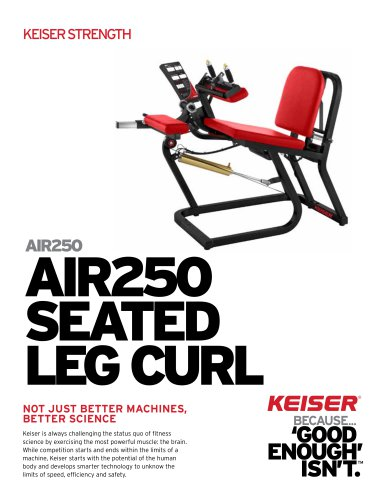 AIR250 SEATED LEG CURL