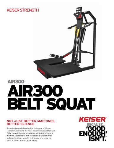 AIR300 BELT SQUAT