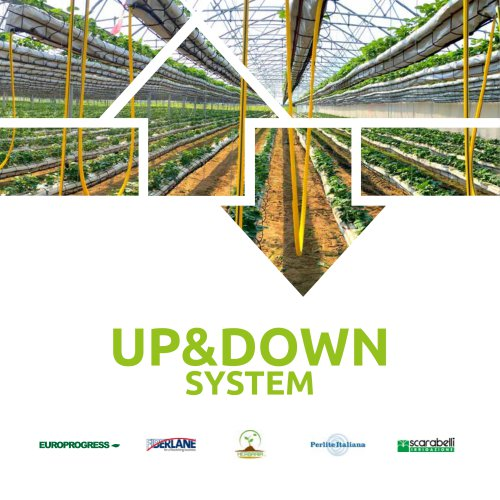 UP & DOWN SYSTEM