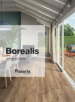 Borealis - 1