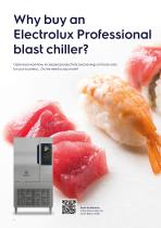 Electrolux Professional SkyChillS Blast Chillers - 4