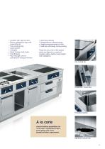 Electrolux Professional thermaline M2M - Made to measure - 15