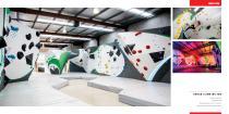 Walltopia Climbing Walls Portfolio - 31