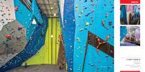 Walltopia Climbing Walls Portfolio - 9
