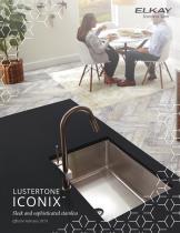 ICONIX - 1