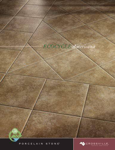 EcoCycle Americana brochure