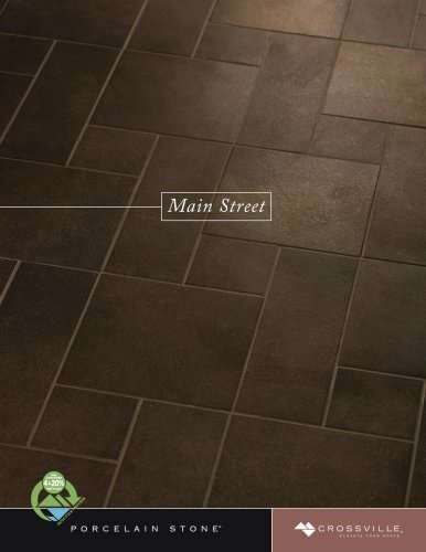 Main Street Brochure