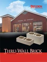 Thru-Wall Brick