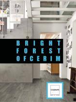 BRIGHT FOREST OFCERIM