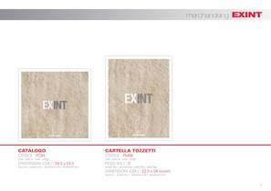 Exint - 2