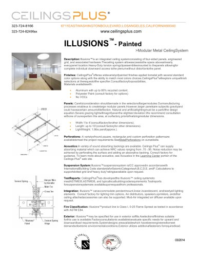 ILLUSIONS?- Painted