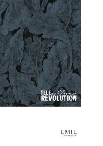 TeleDiMarmoRevolution 2021.02