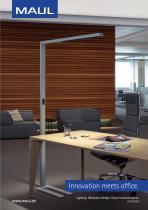 Lighting. Workplace Design. Visual Communication. 2019/2020